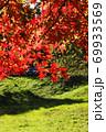 ピクニック日和、公園、里山に行こう-3 69933569