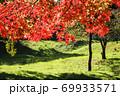ピクニック日和、公園、里山に行こう 69933571