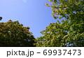 見上げた青空 69937473