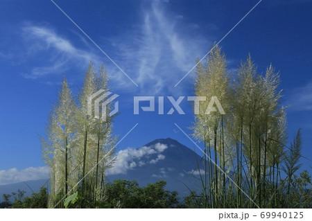 富士山+パンパスグラス+大石公園+雲とパンパスグラス 69940125