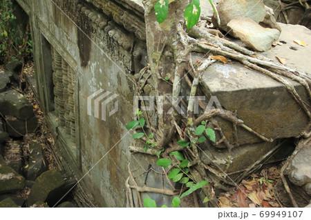 カンボジアアンコール遺跡とガジュマル 69949107