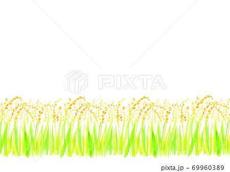 水彩で描いた稲穂のイラスト 69960389