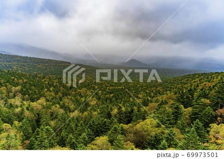 雨の松見大橋から見た秋の風景 俯瞰 北海道上士幌町 69973501
