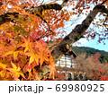 紅葉のある景色 69980925