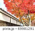 紅葉の小径 69981291