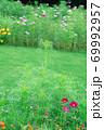 緑の風景 69992957