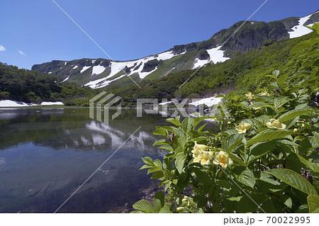 沼とウコンウツギ(北海道・大雪山) 70022995