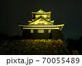 浜松城 警戒 ライトアップ 70055489
