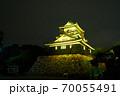 浜松城 警戒 ライトアップ 70055491