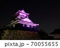 浜松城 乳がん月間 ピンク 70055655