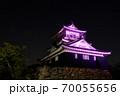 浜松城 乳がん月間 ピンク 70055656