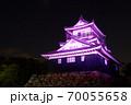 浜松城 乳がん月間 ピンク 70055658