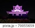 浜松城 乳がん月間 ピンク 70055659