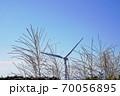 三重県 青山高原 逆光の風車とススキ(初秋、風力発電) 70056895