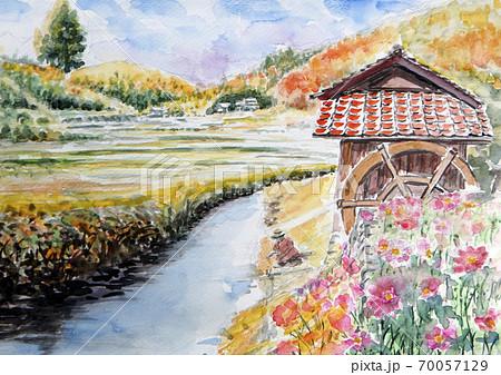 山の水車と秋桜 70057129