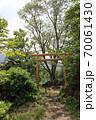 志賀高原夏の丸池の風景 70061430