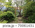 志賀高原夏の丸池の風景 70061431