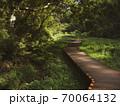 小網代の森の風景 10月 70064132