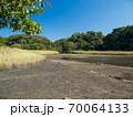 青空の小網代の森の風景 10月 70064133