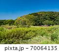 青空の小網代の森の風景 10月 70064135