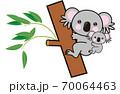 コアラ 70064463