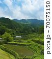 鳥取県 つく米の棚田(日本の棚田百選) 70075150