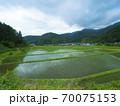 鳥取県 横尾の棚田(日本の棚田百選) 70075153