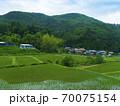 鳥取県 横尾の棚田(日本の棚田百選) 70075154