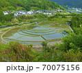 和歌山県 あらぎ島の棚田(日本の棚田百選) 70075156