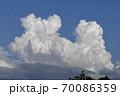 発達する双頭の入道雲、雄大積雲 70086359