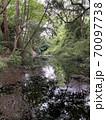 小田原城址公園の池 70097738