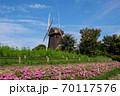 鶴見緑地公園 風車の丘 70117576