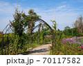 大阪鶴見緑地公園 バラ園 70117582