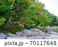 大阪鶴見緑地公園 風景 70117648