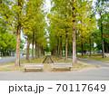 大阪鶴見緑地公園 初秋風景 70117649