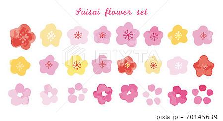 水彩タッチで描かれた桜と梅の花 70145639