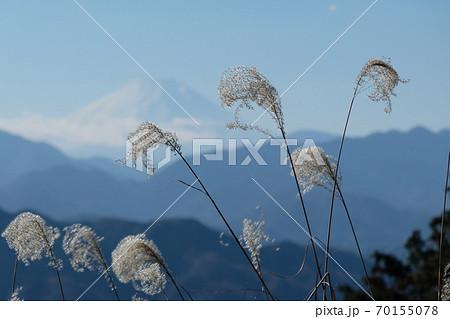 富士山の見える絶景トレイル。秋の高尾山 70155078