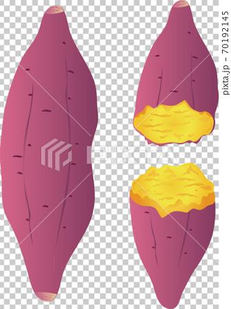 秋天的紅薯烤土豆插圖素材 70192145