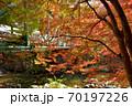 奥津渓の紅葉(岡山県苫田郡) 70197226