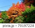 奥津渓の紅葉(岡山県苫田郡) 70197228