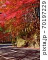 奥津渓の紅葉(岡山県苫田郡) 70197229