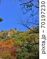 奥津渓の紅葉(岡山県苫田郡) 70197230