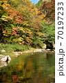 奥津渓の紅葉(岡山県苫田郡) 70197233