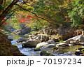 奥津渓の紅葉(岡山県苫田郡) 70197234