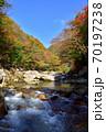 奥津渓の紅葉(岡山県苫田郡) 70197238