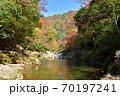 奥津渓の紅葉(岡山県苫田郡) 70197241