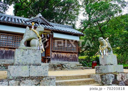 【香川】小豆島 春日神社(中山農村歌舞伎舞台)境内の狛犬 70203818
