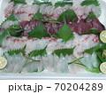 自宅で造る刺身の4種盛り いさき/かつお/鯛/かんぱち 70204289