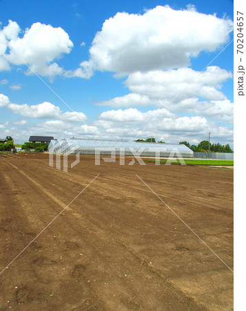 初夏の耕作された畑と農業用ハウスのある風景 70204657
