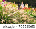 秋を感じさせるススキの向こうを散歩する人影、里山ガーデンの秋 70226063